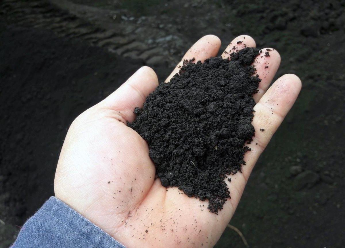 Мокрая земля – степной чернозем.