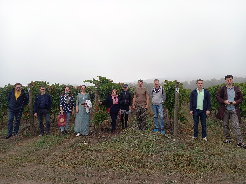 Практика на винограднике Собер-Баш