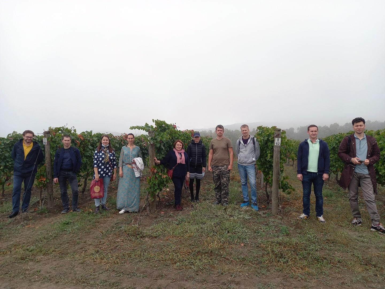Стань послом российского виноделия! Первый курс в Краснодарском крае этой осенью