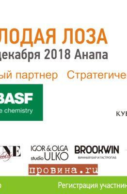 """Партнеры конкурса виноделов """"Молодая лоза"""""""