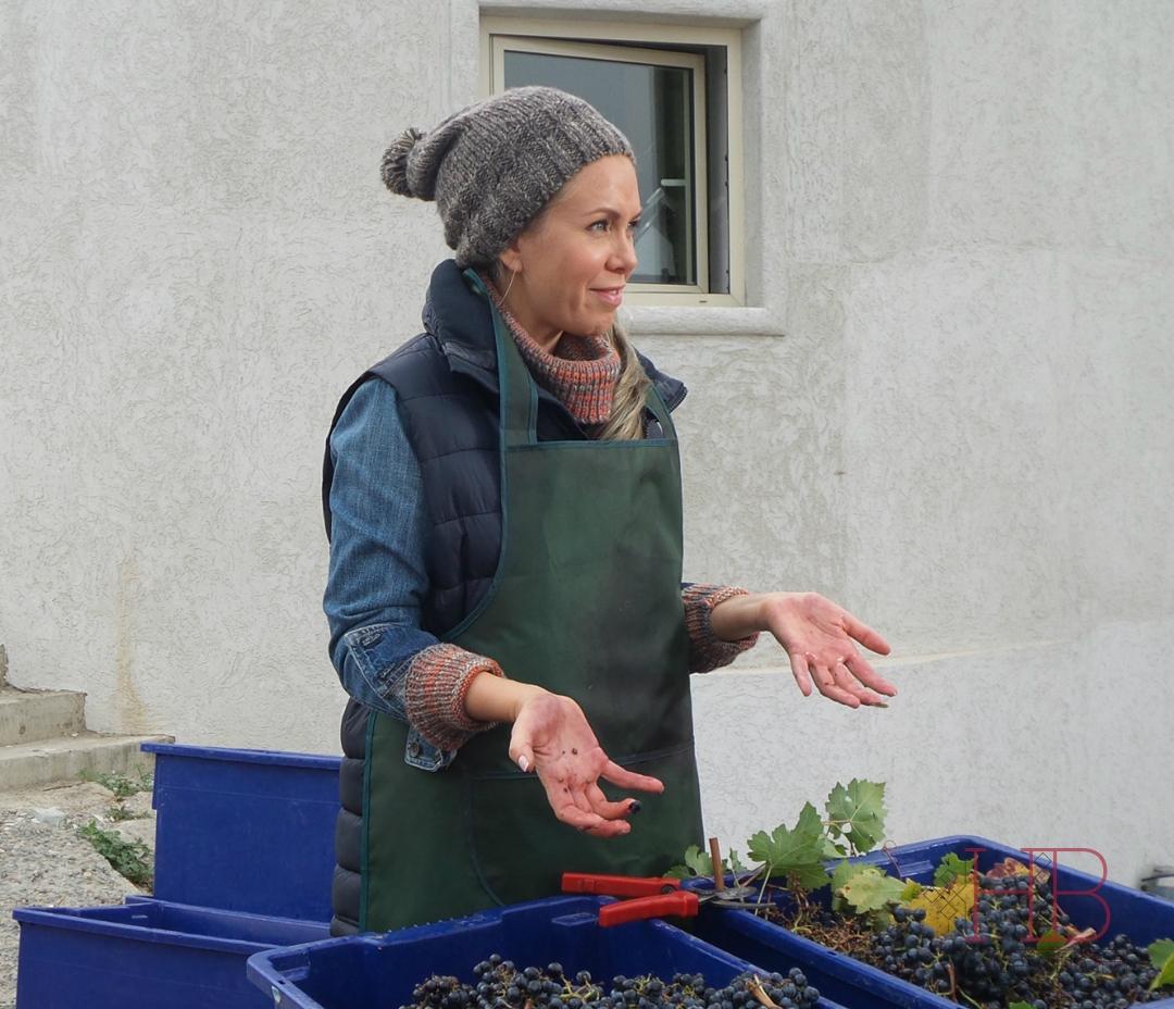 Героиня Яни Шивковой учится сортировать виноград