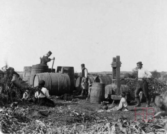 Бессарабия в начале ХХ века