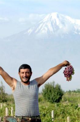 Культура армян включает использование винограда и в кулинарии