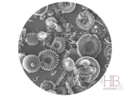 Фильтрующим элементом является кизельгур (диатомит), извлекаемый из кремниевой скальной осадочной породы и состоит из диатомовых водорослей, покрытых раковиной.