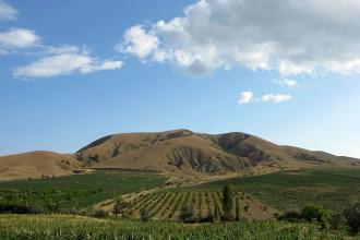 Винная Азия - Наше Вино