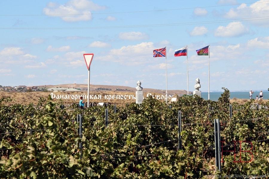 Виноградники Тамани