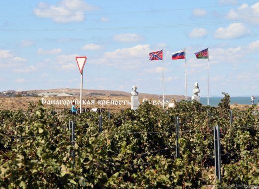 Полгода кубанских вин