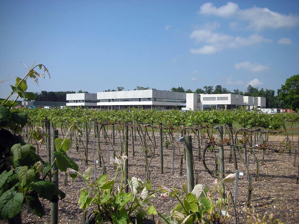 Институт наук о виноградарстве и виноделии Университета Бордо - мощная научная и образовательная база на совместном финансировании государством, региональным правительством и комитетом виноделов Бордо.