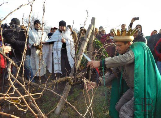 Праздник виноградарей «Трифон Зарезан» в «Золотой Балке»